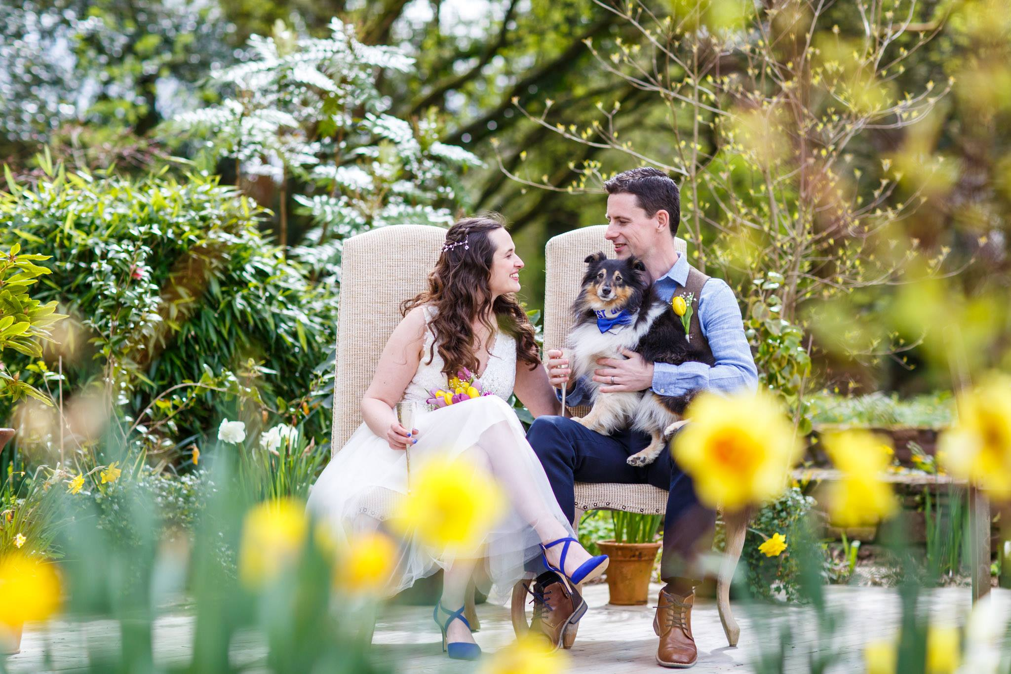 Dog friendly Elopement Wedding